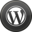 wordpress-icone-9272-64